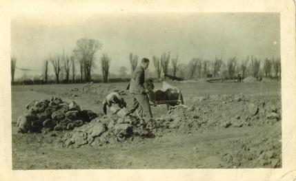 1926 Poplar Road Ground Clearing-01