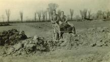 1926 Poplar Road Ground Clearing-03