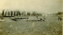 1926 Poplar Road Ground Clearing-05